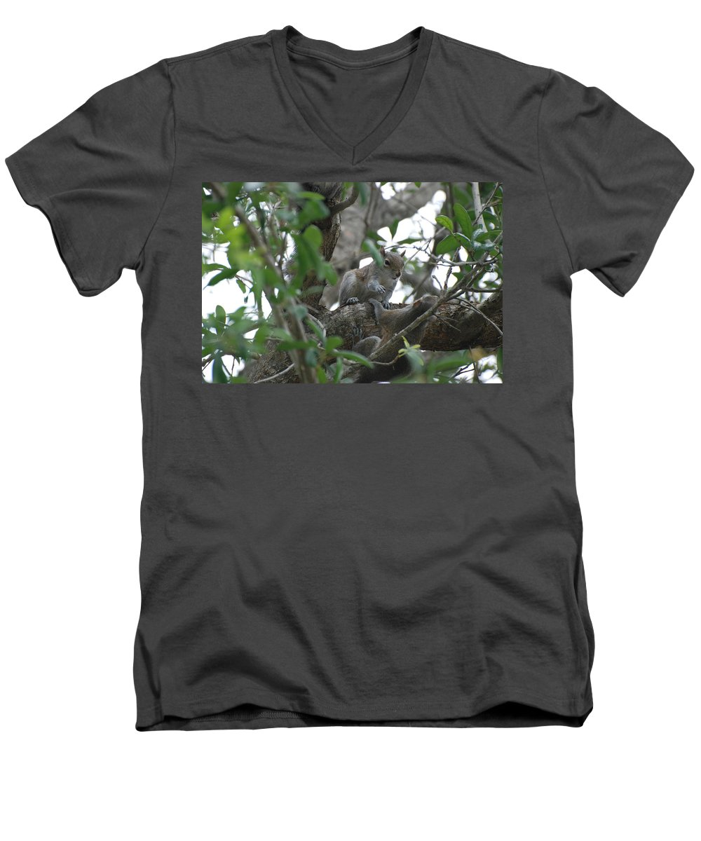 Squirrel Men's V-Neck T-Shirt featuring the photograph Lending A Helping Hand by Rob Hans