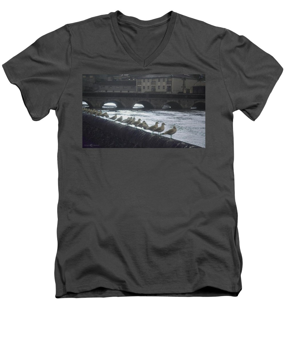 Birds Men's V-Neck T-Shirt featuring the photograph Line Of Birds by Tim Nyberg
