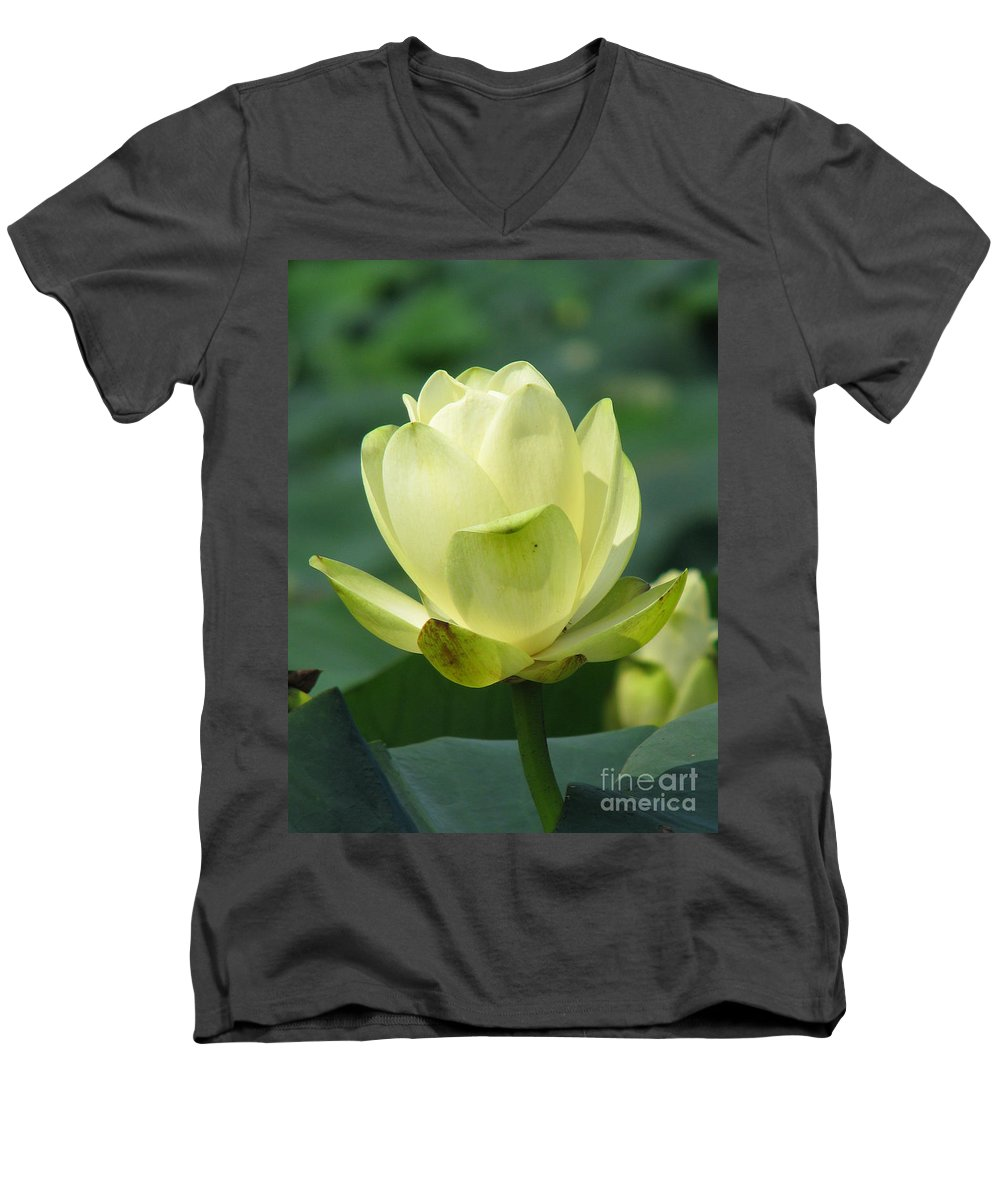 Lotus Men's V-Neck T-Shirt featuring the photograph Lotus by Amanda Barcon