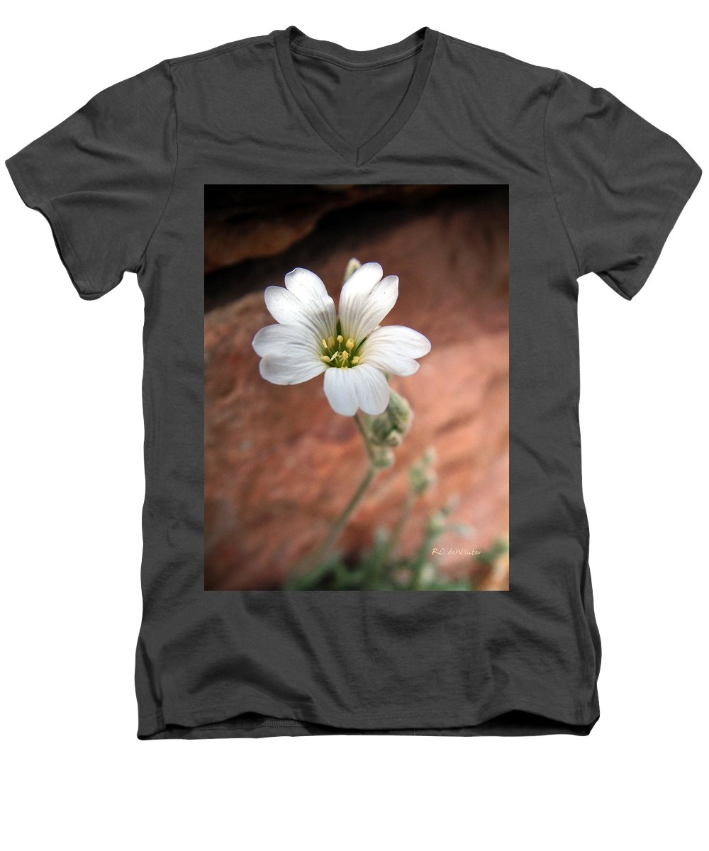 Alpine Men's V-Neck T-Shirt featuring the photograph Mountain Beauty by RC DeWinter