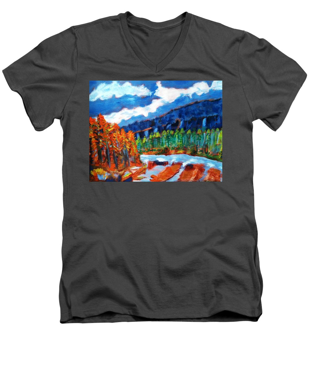 Mountains Men's V-Neck T-Shirt featuring the painting Naturals by R B
