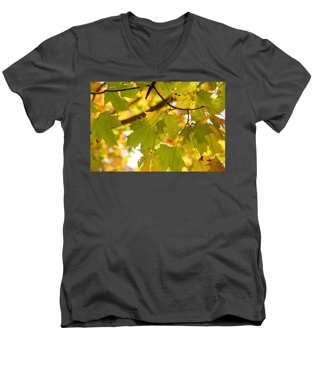 Leaves Men's V-Neck T-Shirt featuring the photograph Natures Glow by Ed Smith