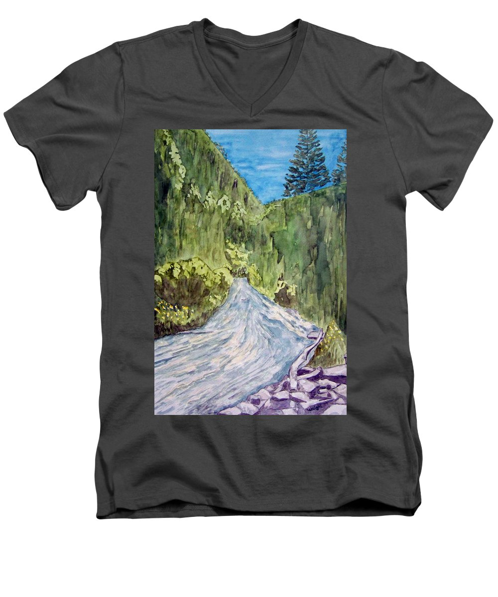 New Mexico Art Men's V-Neck T-Shirt featuring the painting New Mexico Canyon Impression by Larry Wright