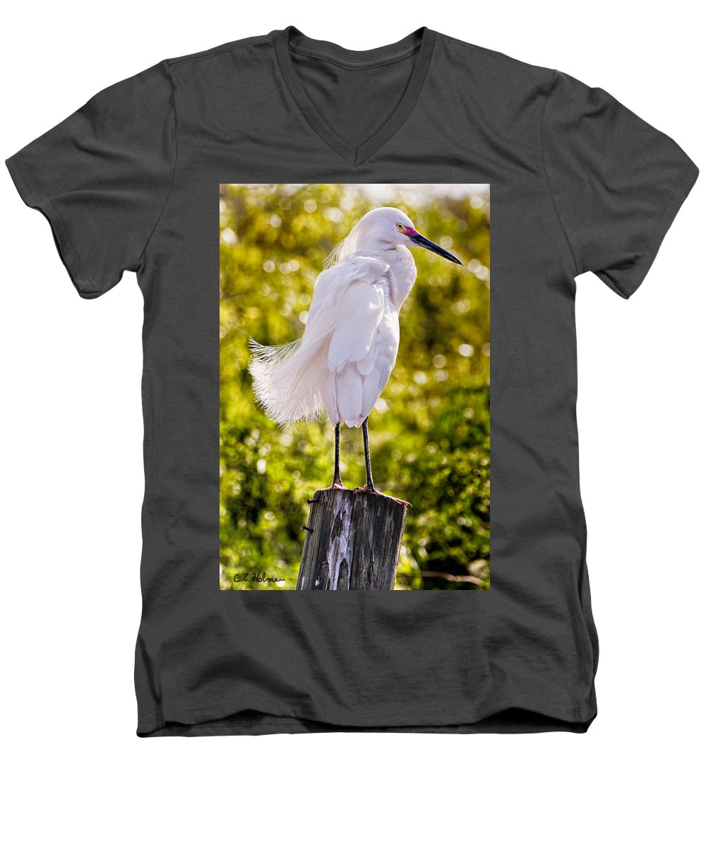 snowy Egret Men's V-Neck T-Shirt featuring the photograph On Watch by Christopher Holmes
