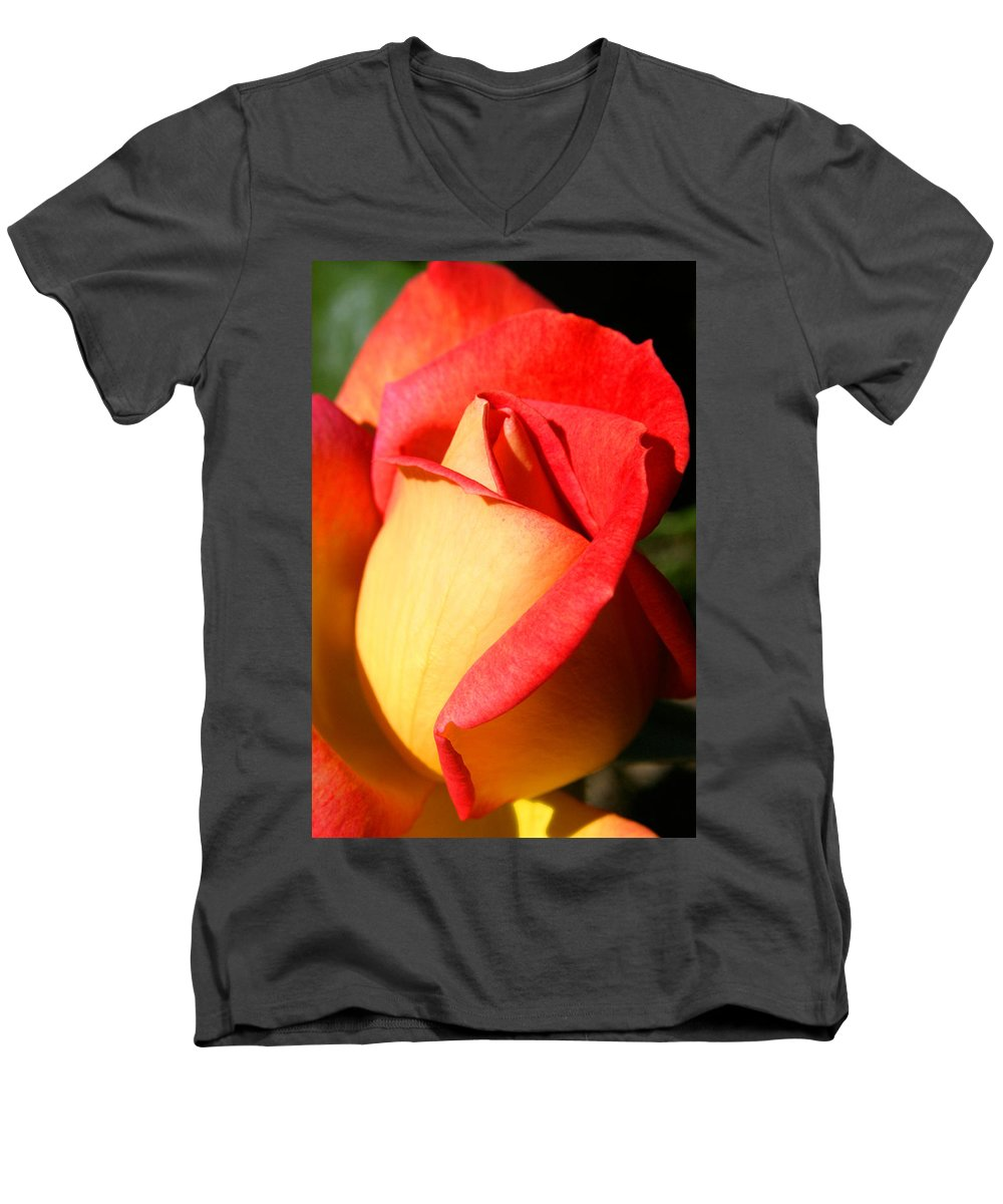 Orange Rosebud Men's V-Neck T-Shirt featuring the photograph Orange Rosebud by Ralph A Ledergerber-Photography