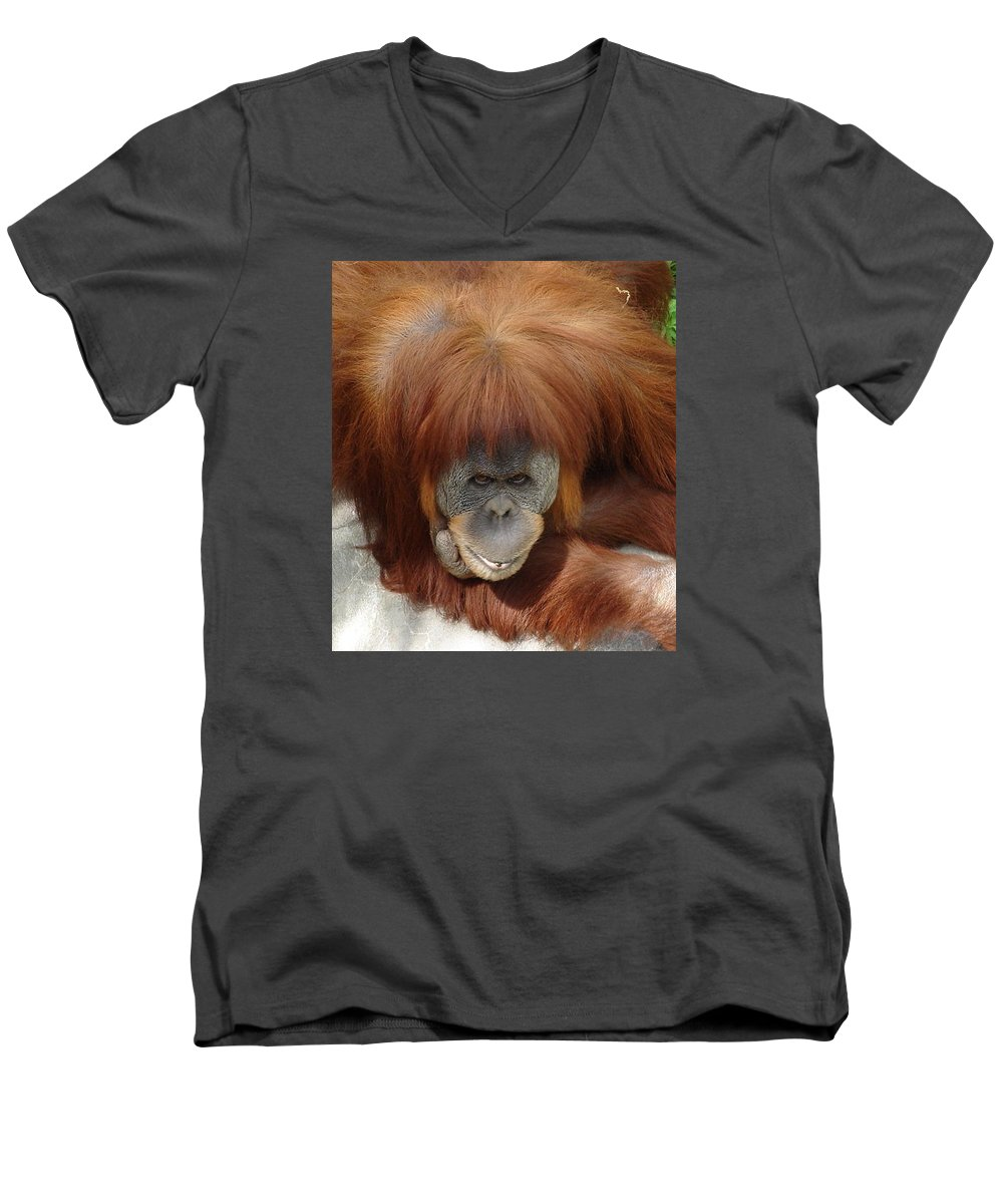 Red Ape Eyes Men's V-Neck T-Shirt featuring the photograph Orangutan by Luciana Seymour