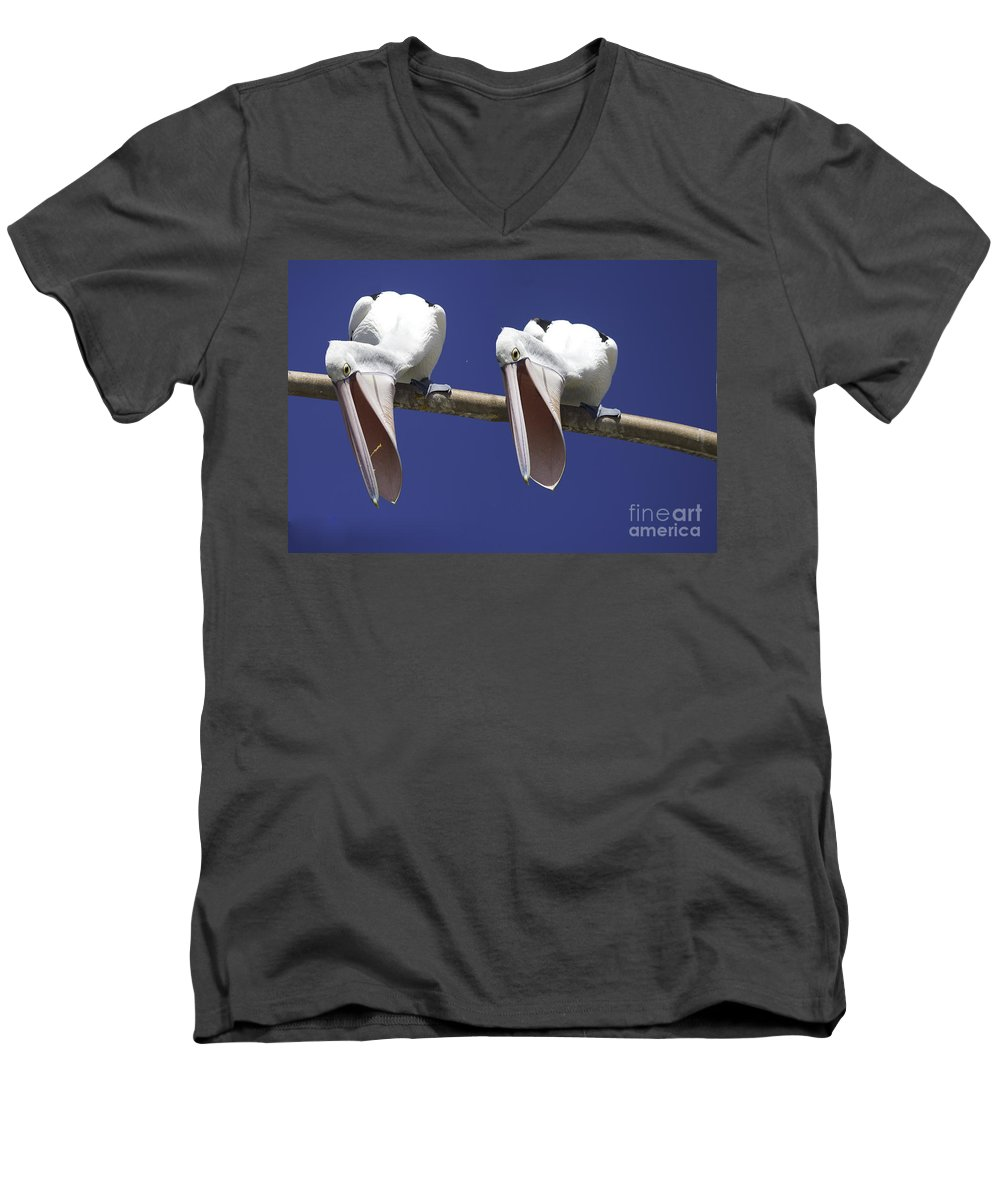 Pelican Men's V-Neck T-Shirt featuring the photograph Pelican Burp by Avalon Fine Art Photography