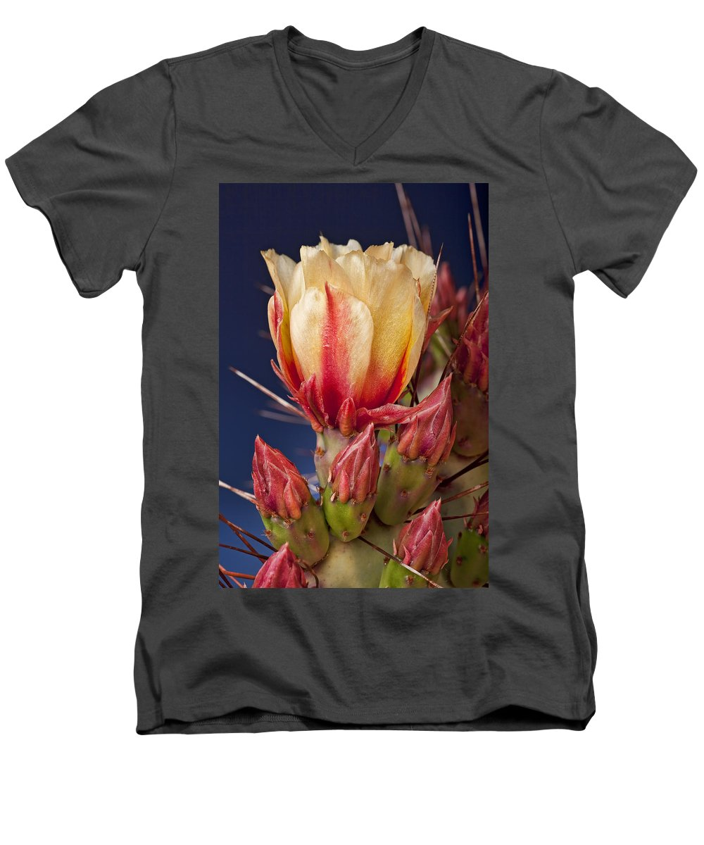 Prickly Pear Men's V-Neck T-Shirt featuring the photograph Prickly Pear Flower by Kelley King