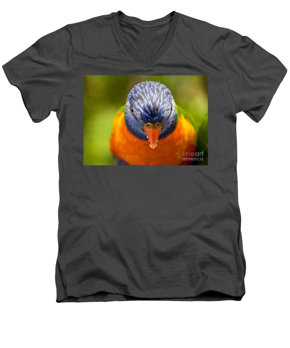 Rainbow Lorikeet Men's V-Neck T-Shirt featuring the photograph Rainbow Lorikeet by Sheila Smart Fine Art Photography