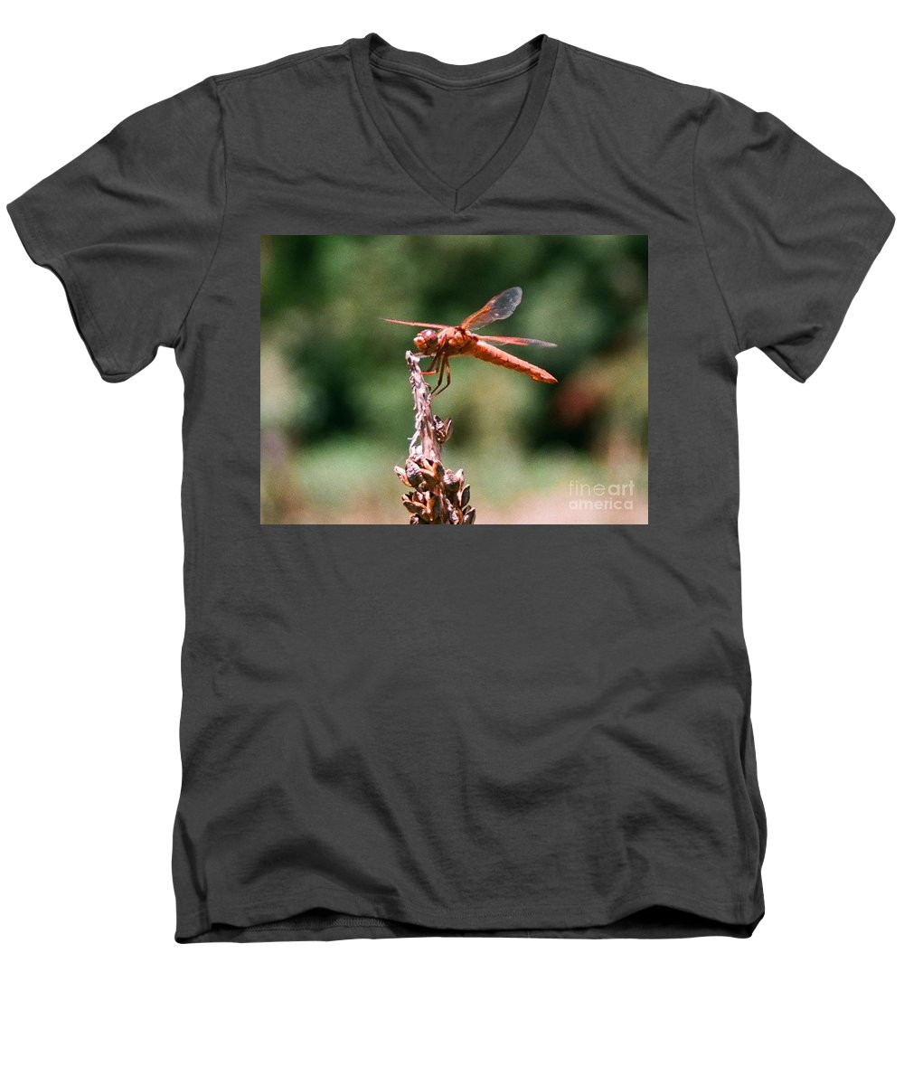 Dragonfly Men's V-Neck T-Shirt featuring the photograph Red Dragonfly II by Dean Triolo