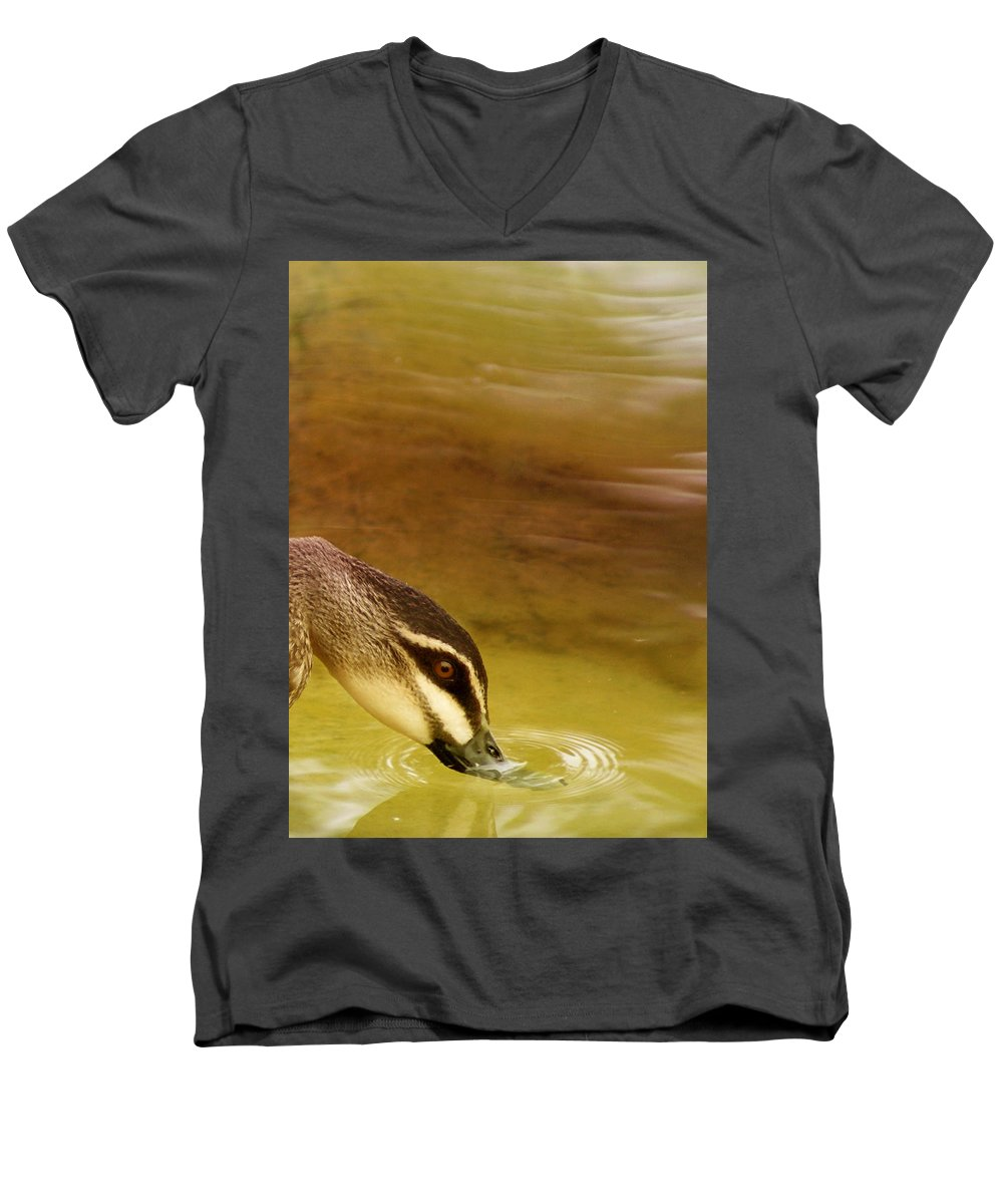 Animals Men's V-Neck T-Shirt featuring the photograph Ripples by Holly Kempe