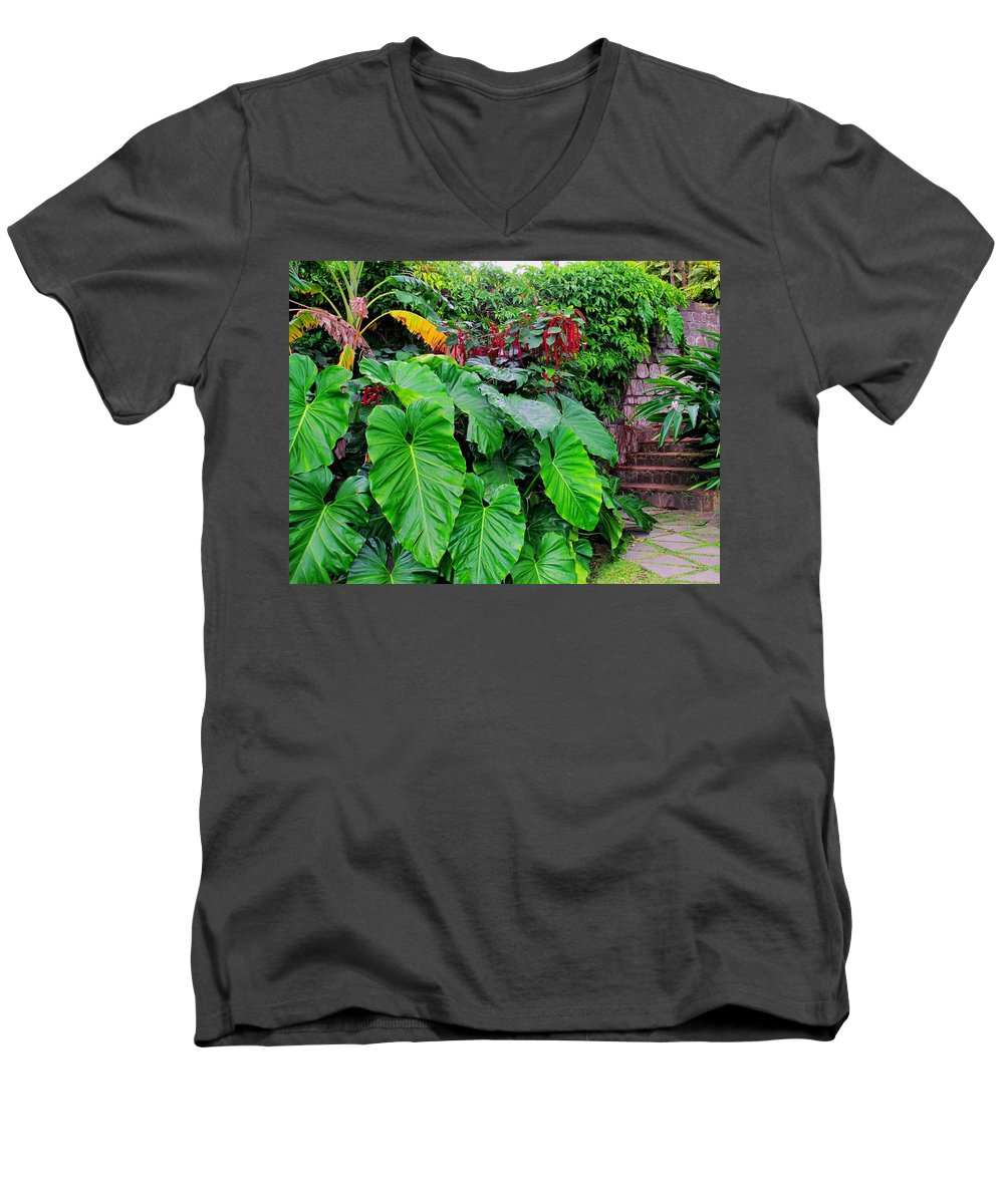 Lush Men's V-Neck T-Shirt featuring the photograph Romney Steps by Ian MacDonald