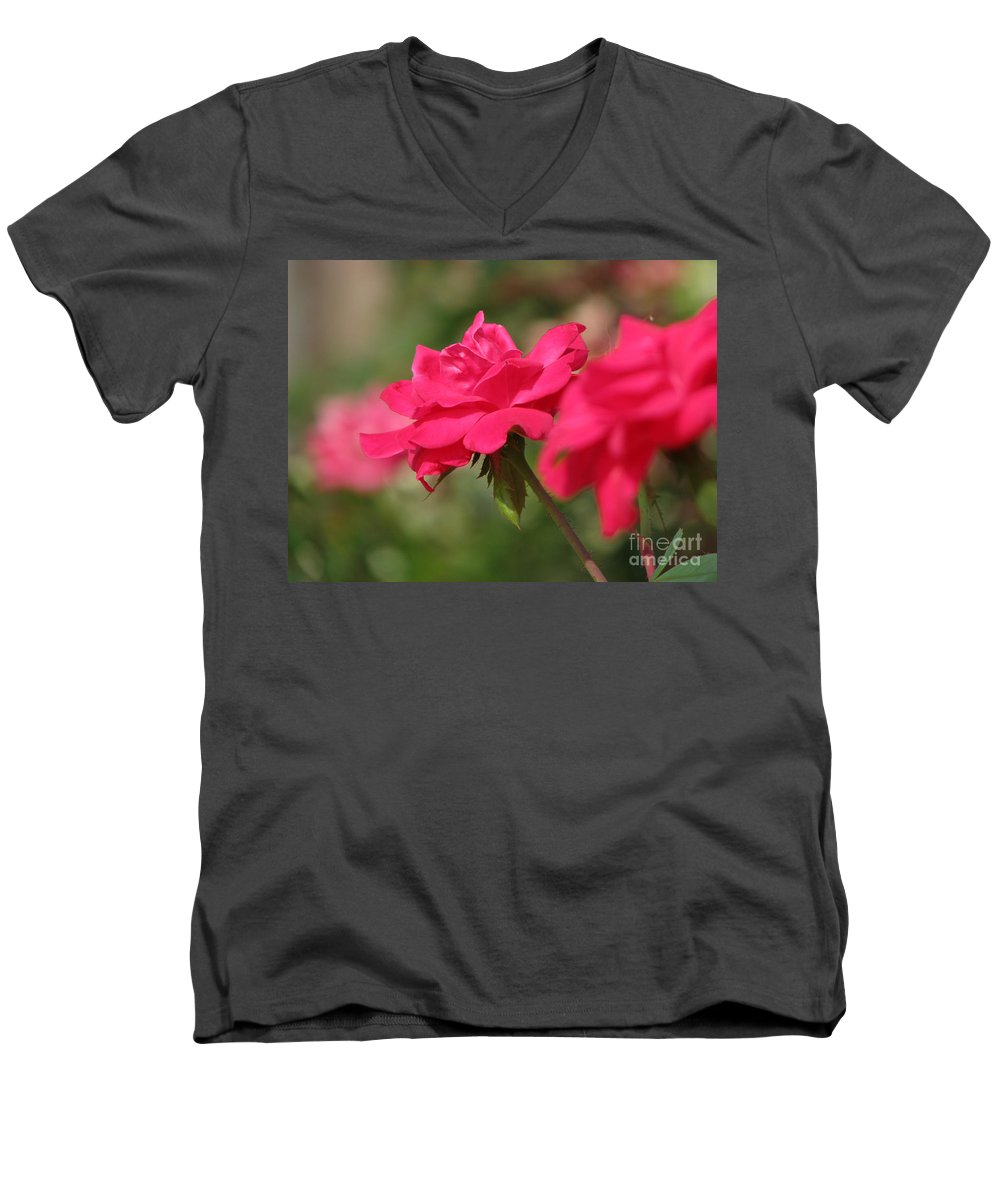 Rose Men's V-Neck T-Shirt featuring the photograph Roses by Amanda Barcon