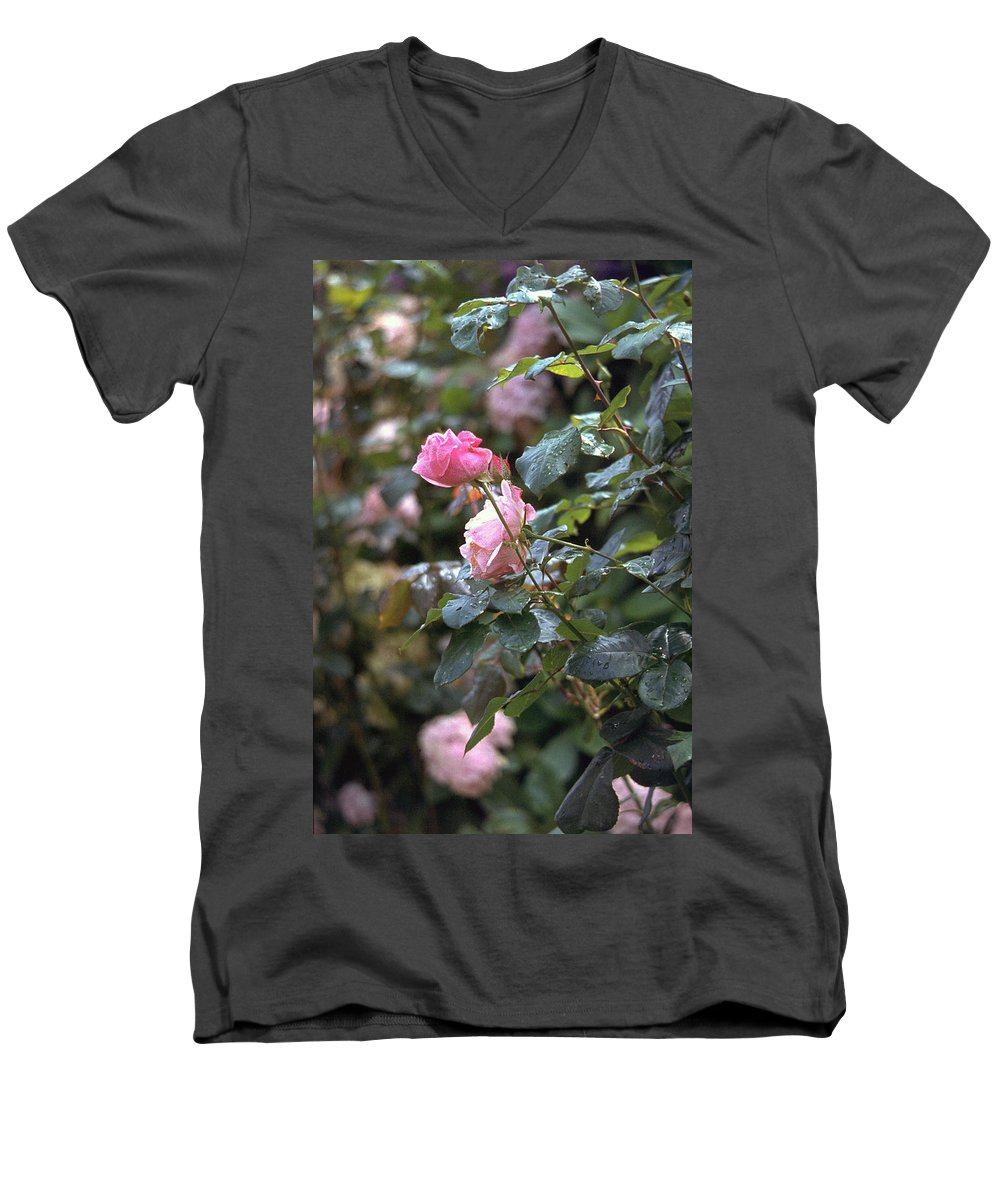 Roses Men's V-Neck T-Shirt featuring the photograph Roses by Flavia Westerwelle