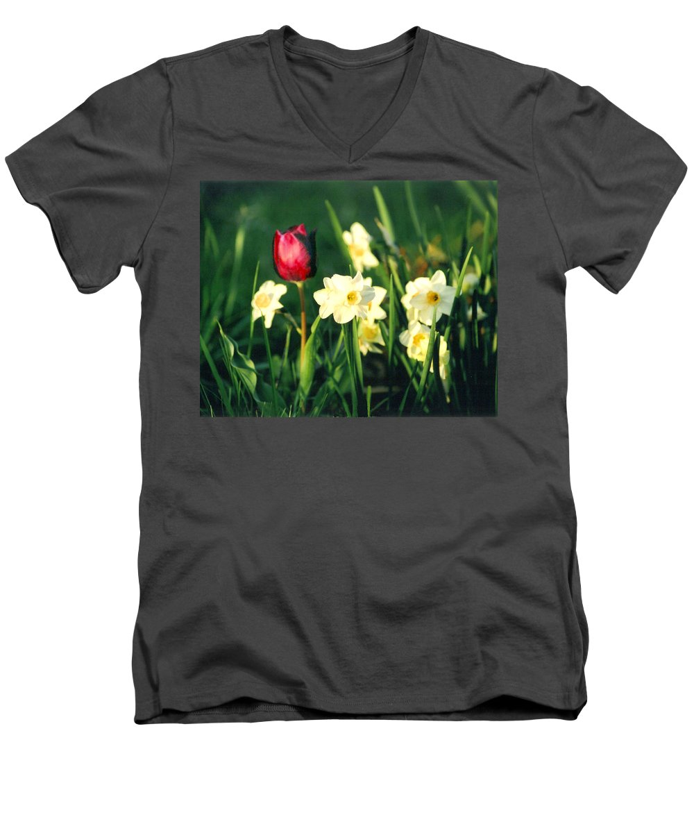 Tulips Men's V-Neck T-Shirt featuring the photograph Royal Spring by Steve Karol