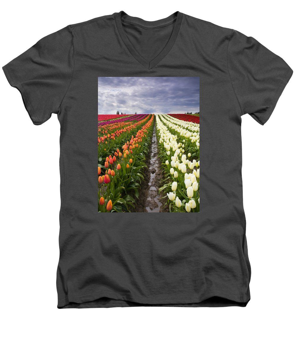 Tulips Men's V-Neck T-Shirt featuring the photograph Sea Of Color by Mike Dawson