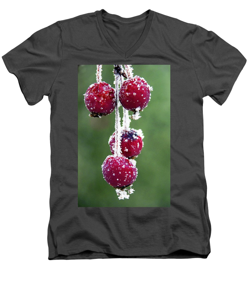 Berries Men's V-Neck T-Shirt featuring the photograph Seasonal Colors by Marilyn Hunt