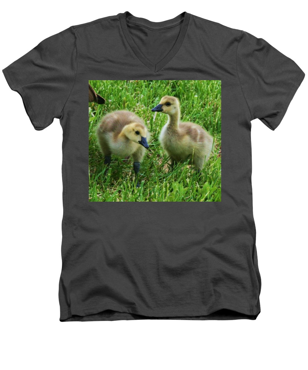 Nature Men's V-Neck T-Shirt featuring the photograph Siblings by Angus Hooper Iii