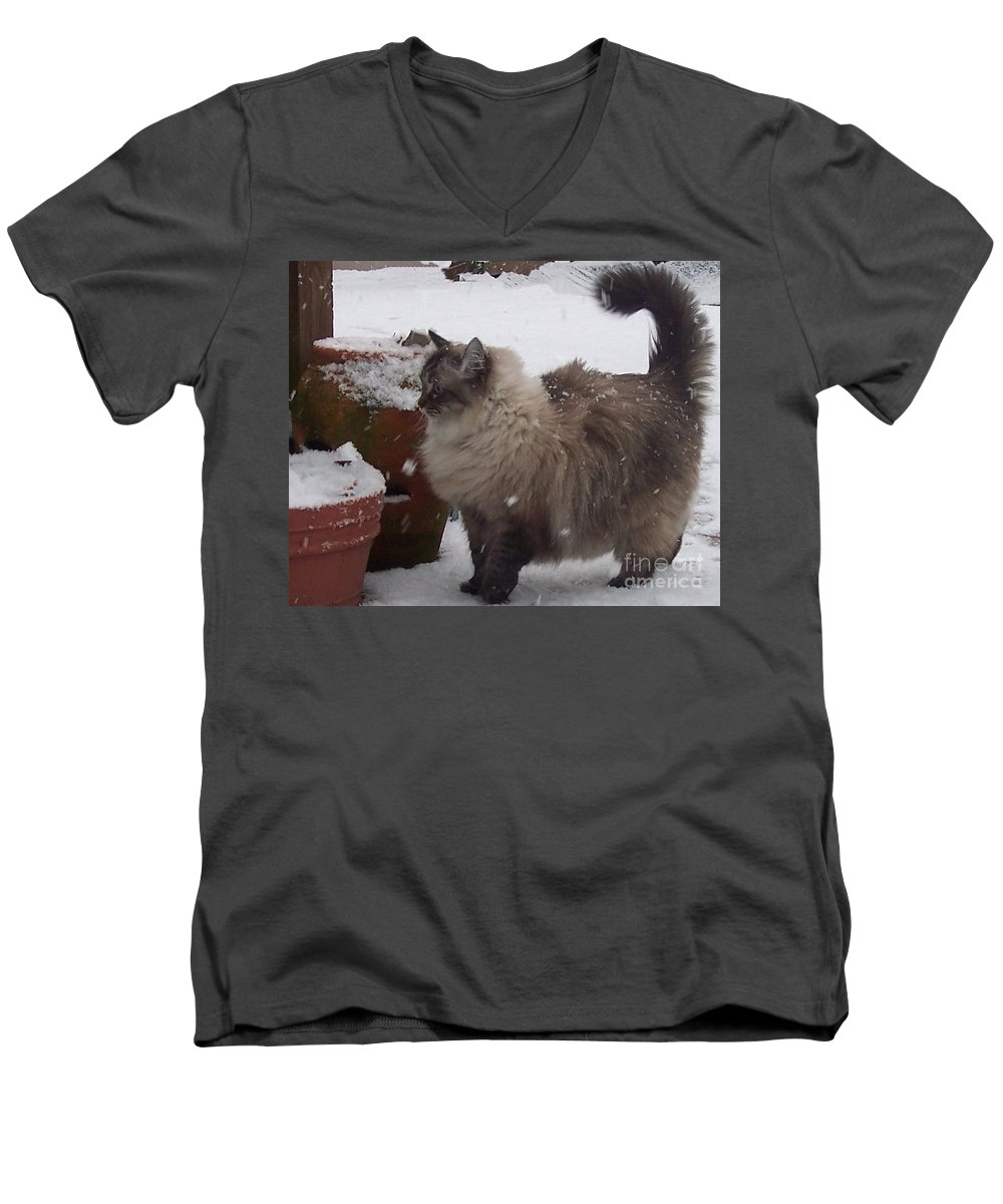 Cats Men's V-Neck T-Shirt featuring the photograph Snow Kitty by Debbi Granruth