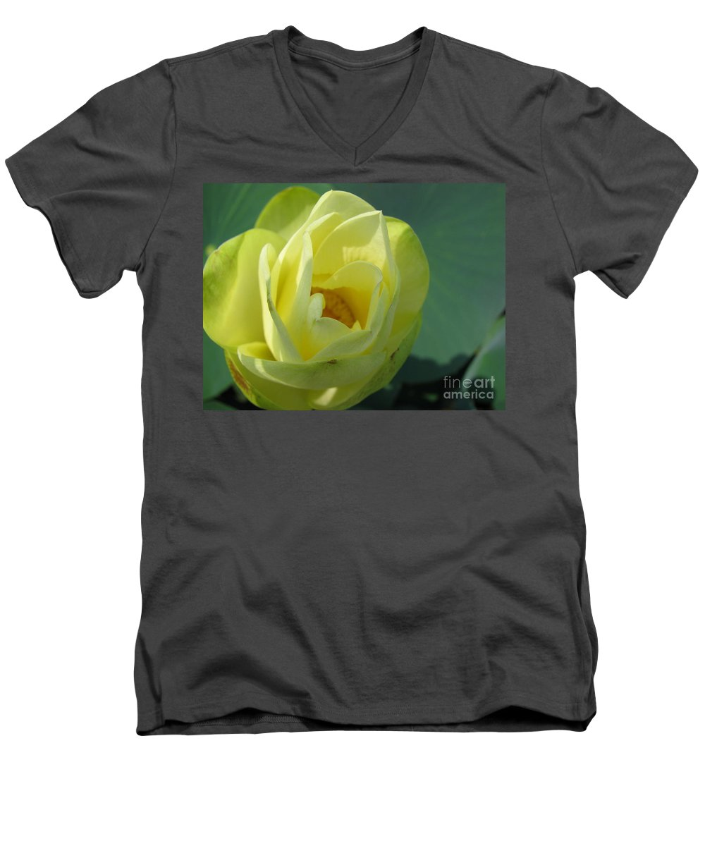Lotus Men's V-Neck T-Shirt featuring the photograph Softly by Amanda Barcon