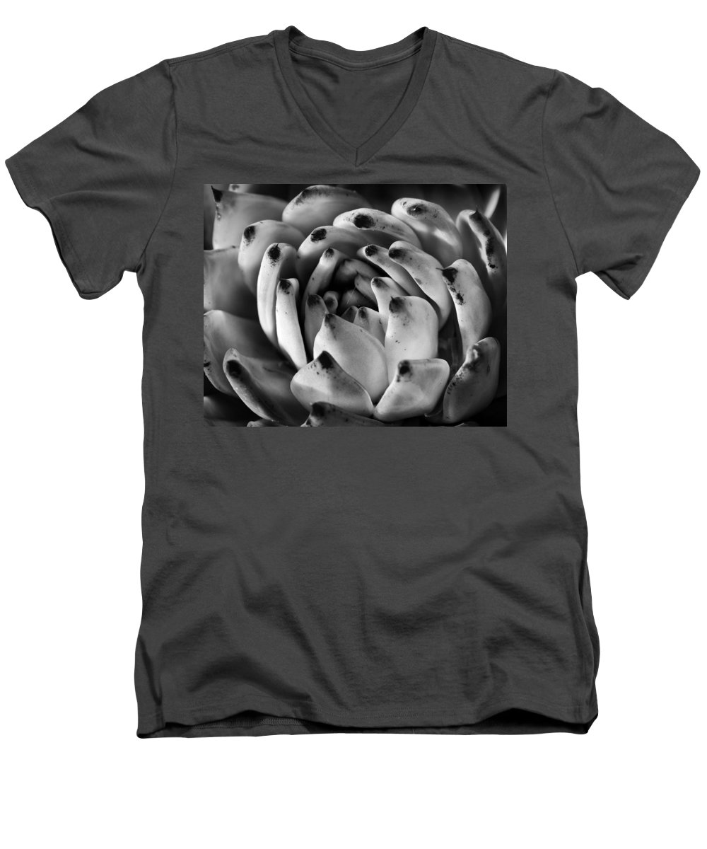 Succulent Men's V-Neck T-Shirt featuring the photograph Succulent Petals Black And White by Kelley King