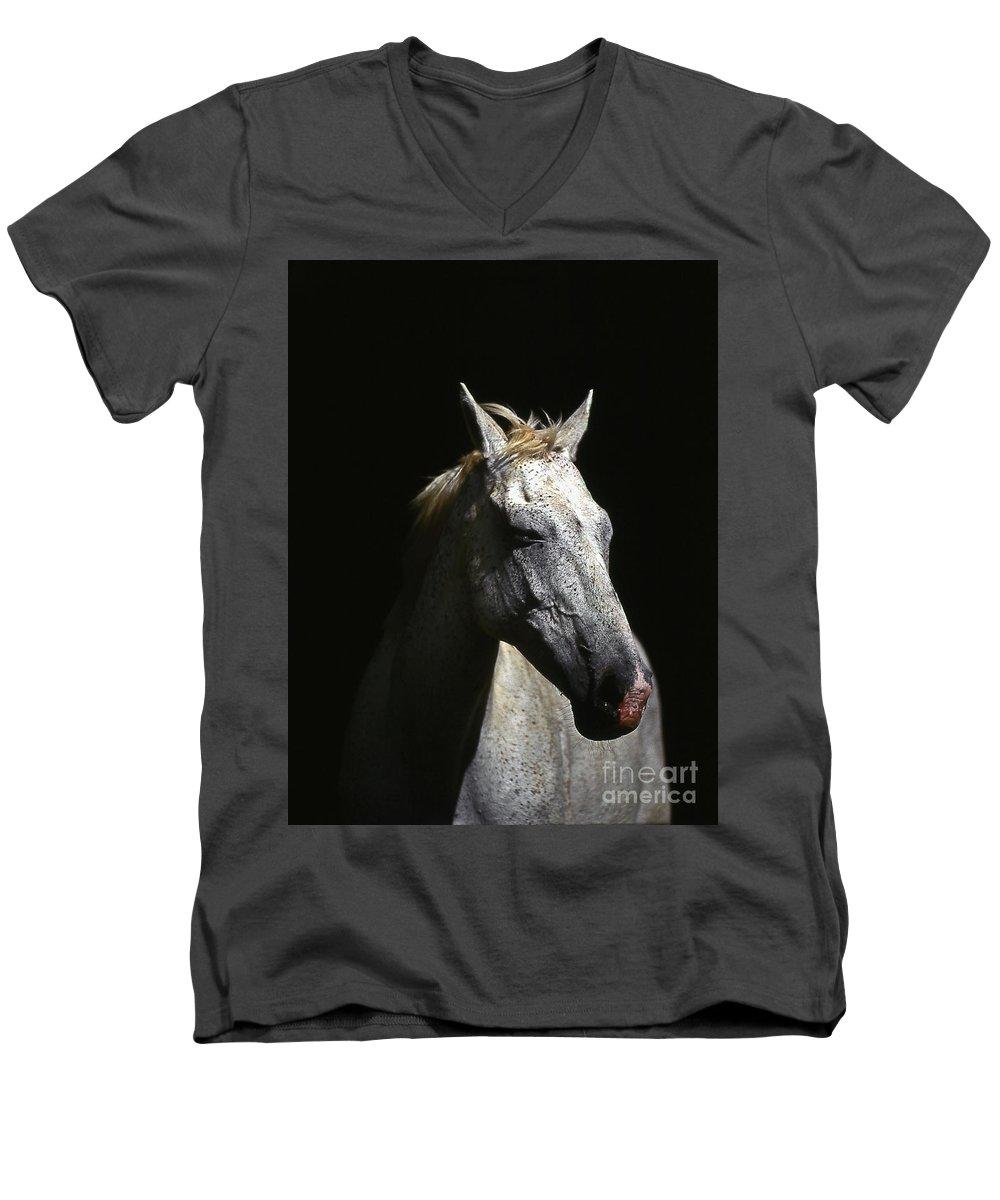 Horse Men's V-Neck T-Shirt featuring the photograph Sundance by Jim Cazel
