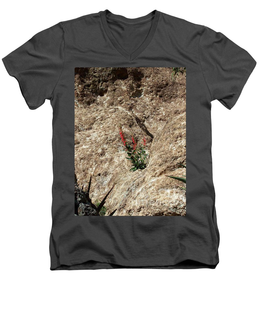 Wildflowers; Flowers Men's V-Neck T-Shirt featuring the photograph Tenacity by Kathy McClure