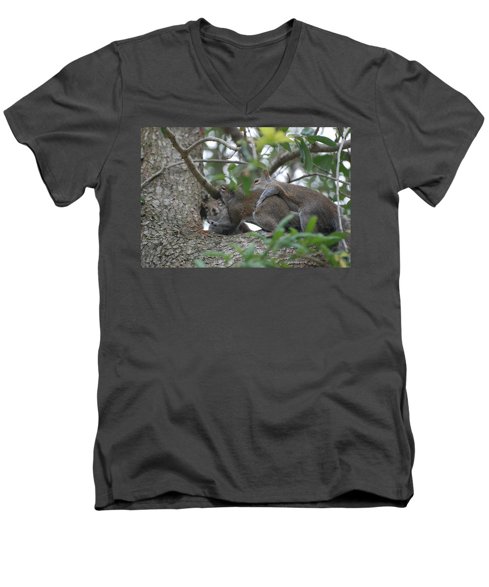 Squirrels Men's V-Neck T-Shirt featuring the photograph The Fight For Life by Rob Hans