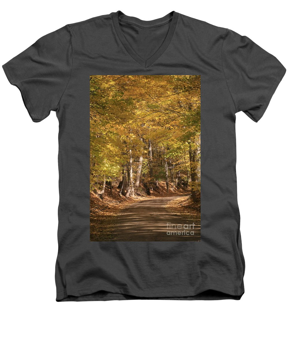 Golden Men's V-Neck T-Shirt featuring the photograph The Golden Road by Robert Pearson