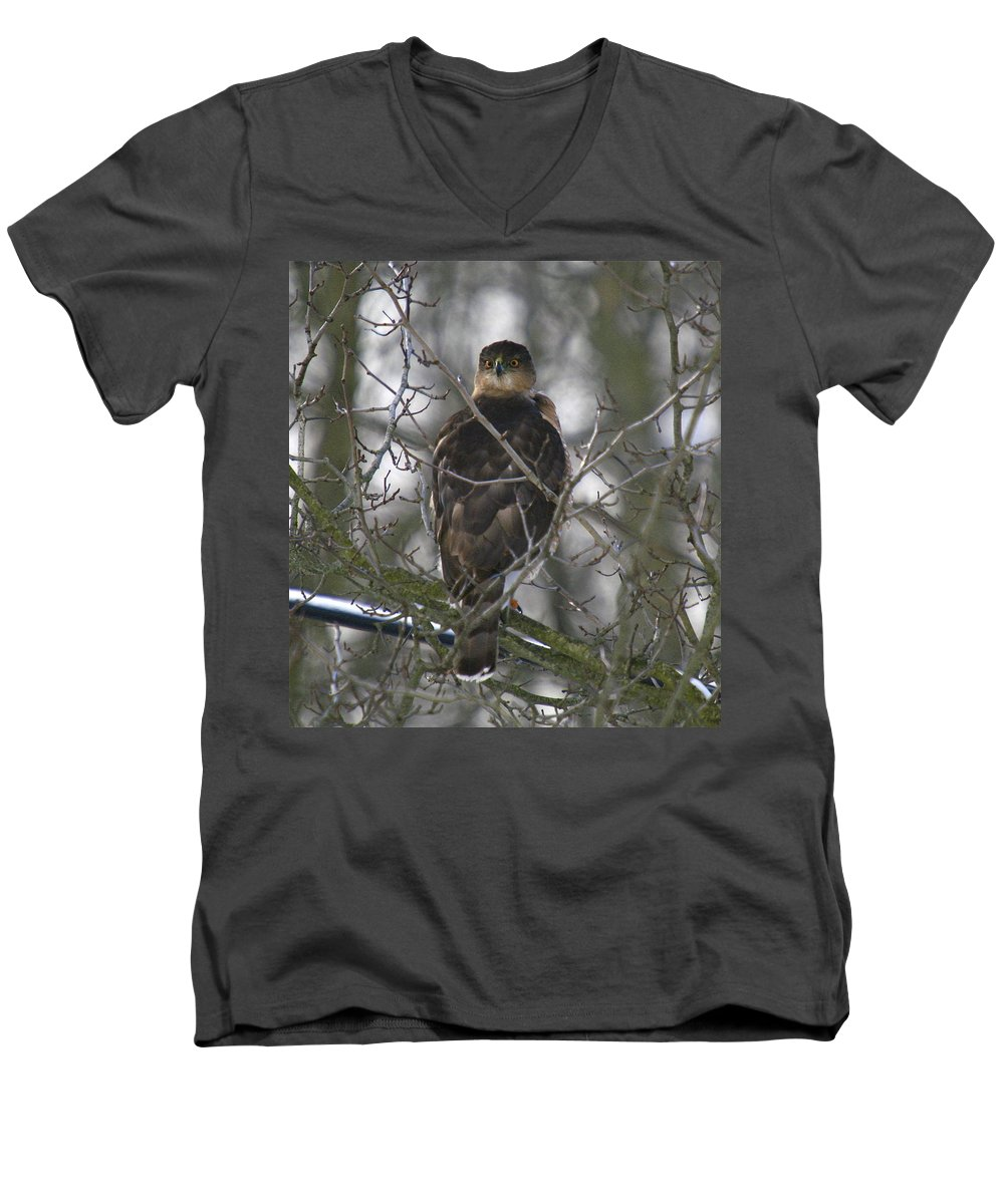 Bird Men's V-Neck T-Shirt featuring the photograph The Hawks Have Eyes by Robert Pearson