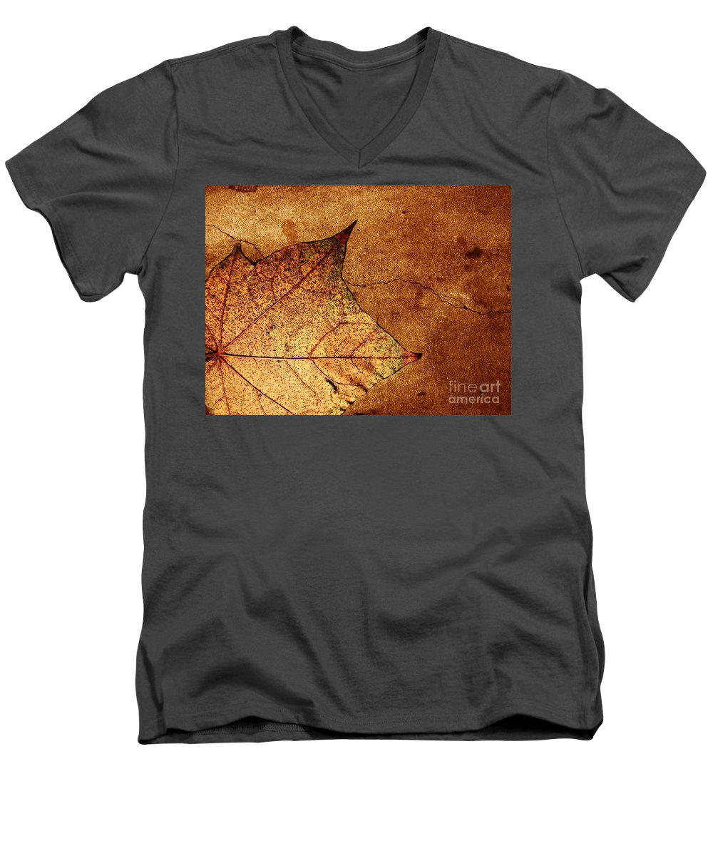 Autumn Men's V-Neck T-Shirt featuring the photograph Today Everything Changes by Dana DiPasquale