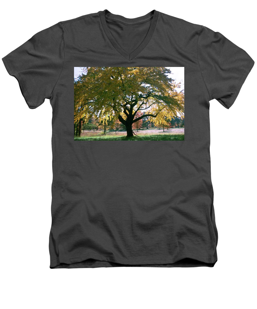 Tree Men's V-Neck T-Shirt featuring the photograph Tree by Flavia Westerwelle