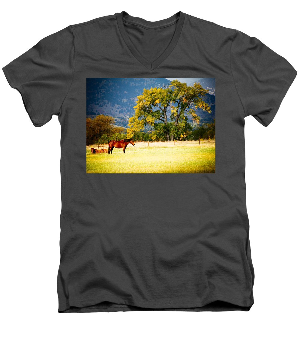 Animal Men's V-Neck T-Shirt featuring the photograph Two Horses by Marilyn Hunt