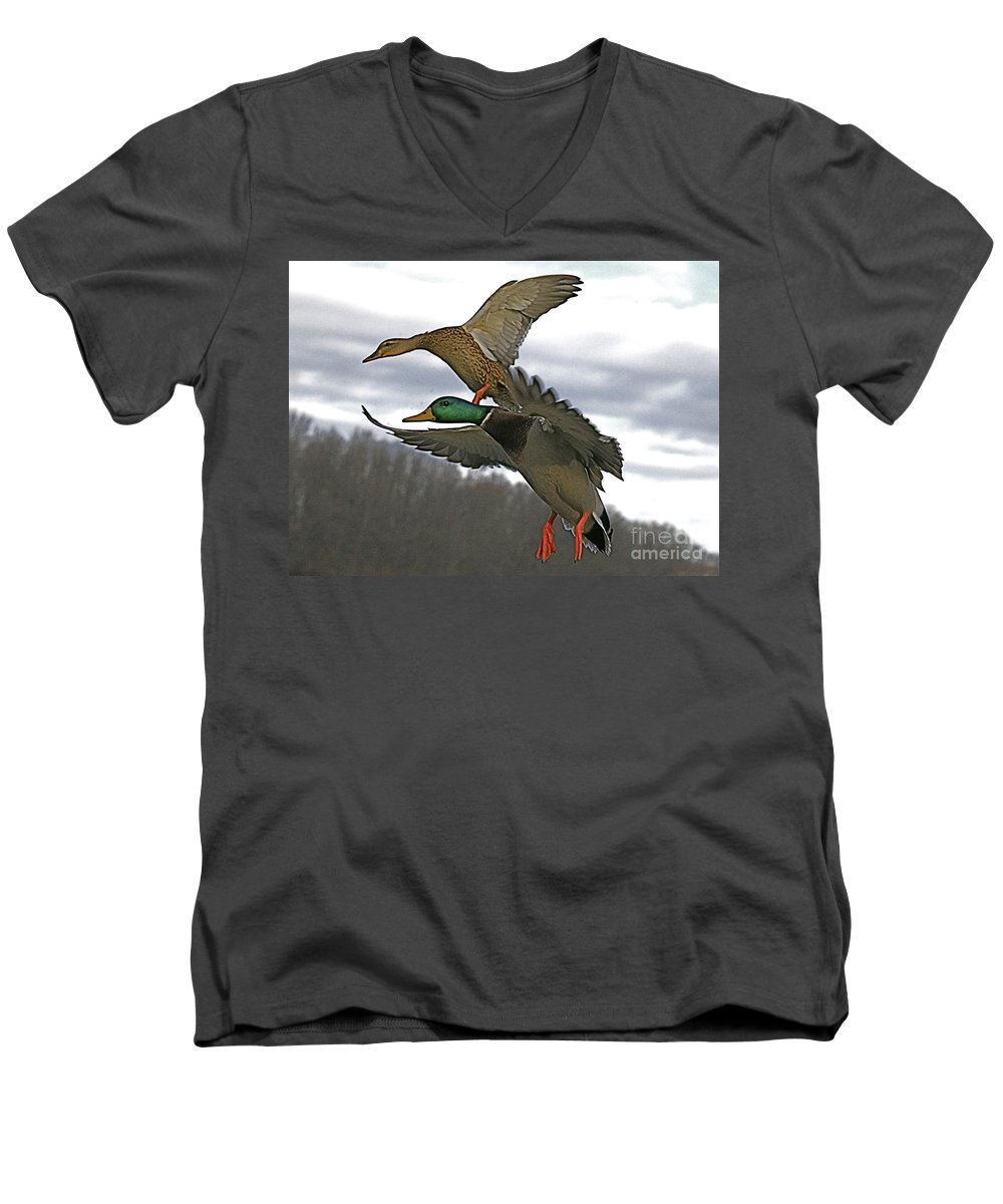 Duck Men's V-Neck T-Shirt featuring the photograph Two Land by Robert Pearson