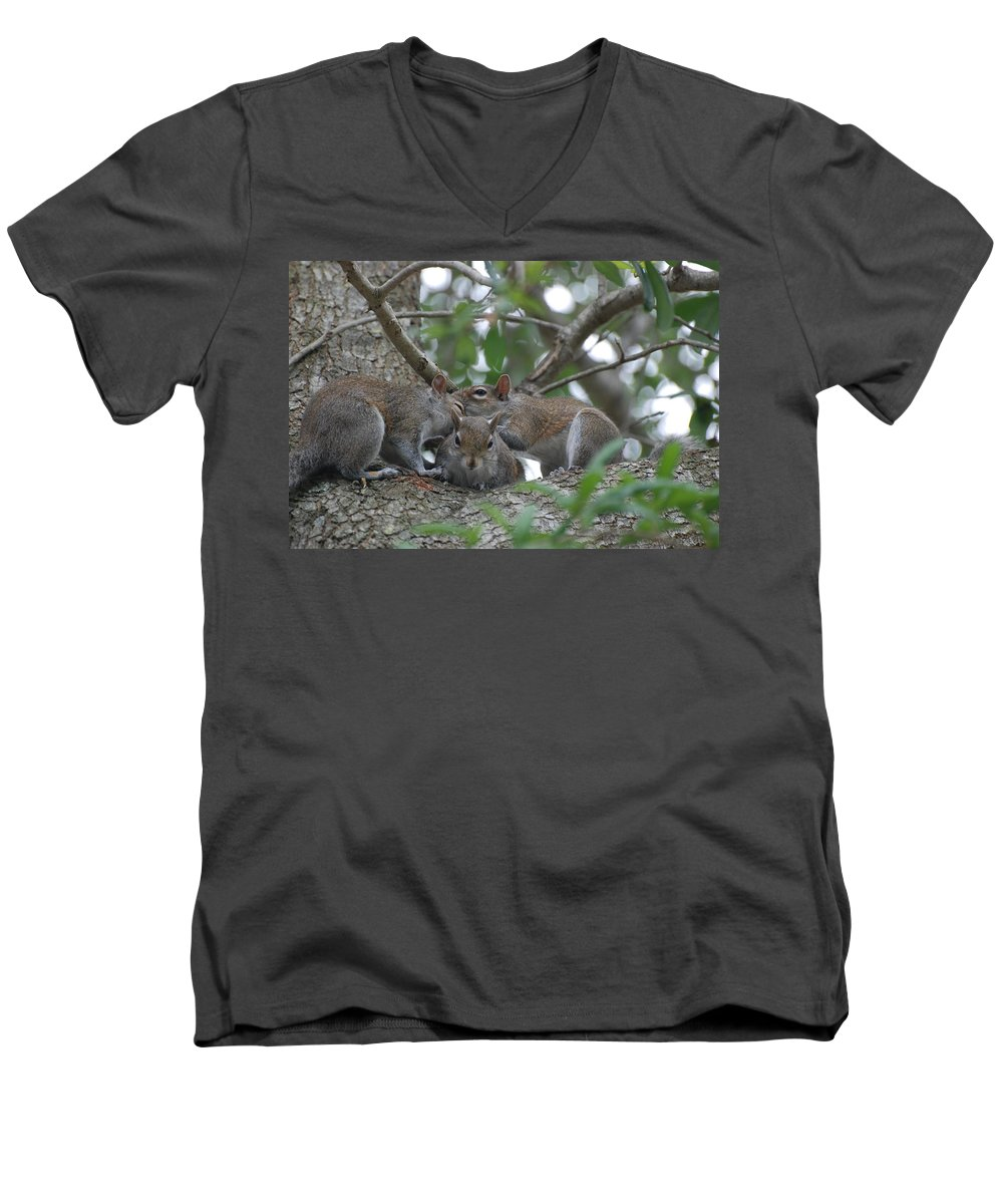 Squirrel Men's V-Neck T-Shirt featuring the photograph Why Me by Rob Hans