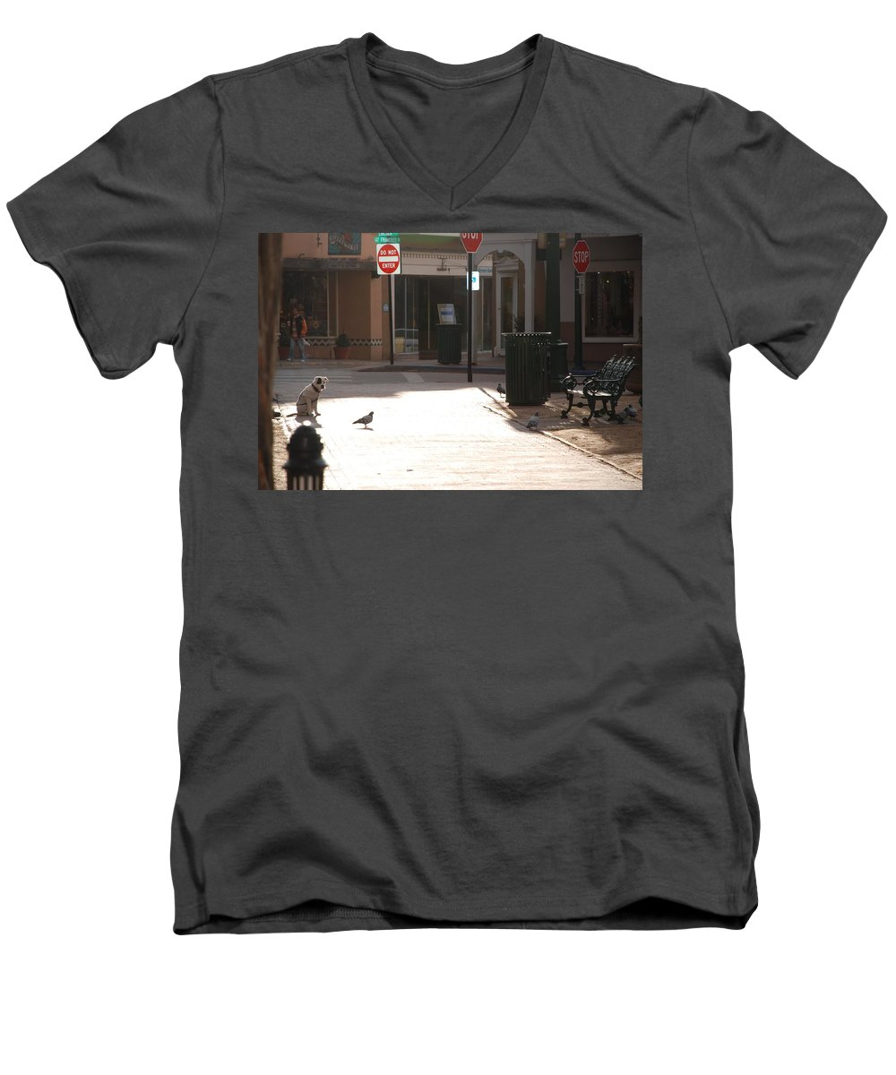 Dog Men's V-Neck T-Shirt featuring the photograph Why Question Mark by Rob Hans