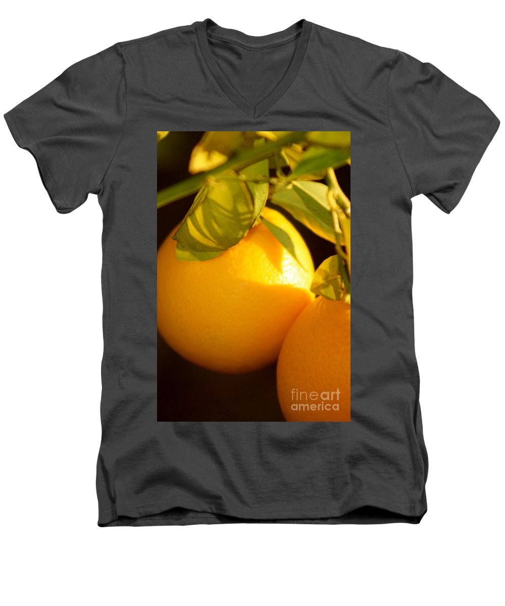 Fruit Men's V-Neck T-Shirt featuring the photograph Winter Fruit by Nadine Rippelmeyer