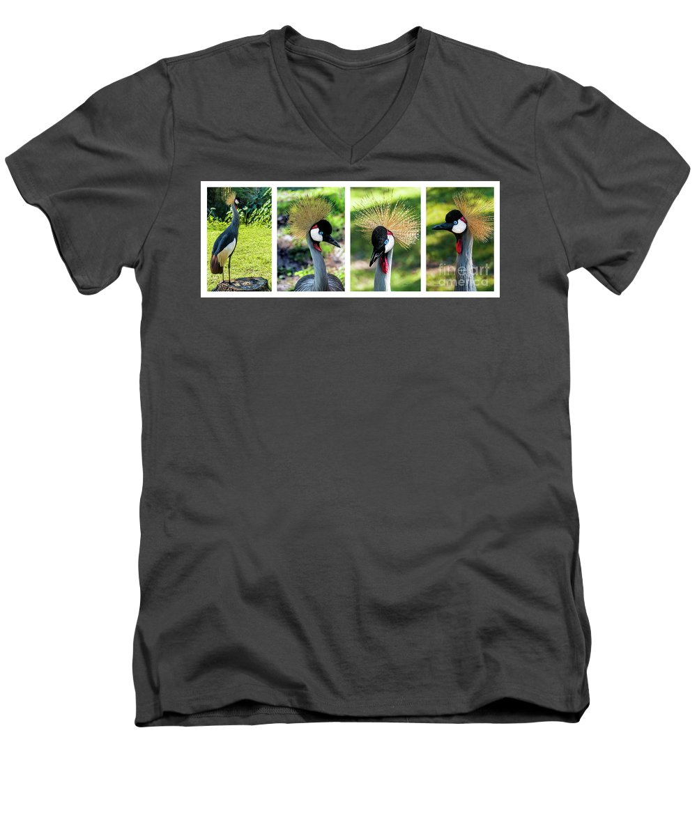 Gulf Men's V-Neck T-Shirt featuring the photograph Grey Crowned Crane Gulf Shores Al Collage 1 by Ricardos Creations