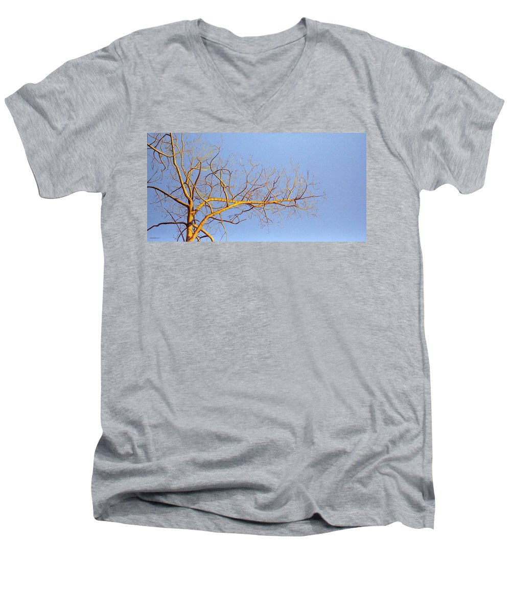 Aspen Painting Men's V-Neck T-Shirt featuring the painting Aspen In The Autumn Sun by Elaine Booth-Kallweit
