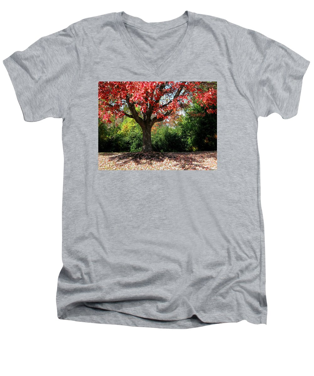 Autumn Men's V-Neck T-Shirt featuring the photograph Autumn Ablaze by Ann Horn