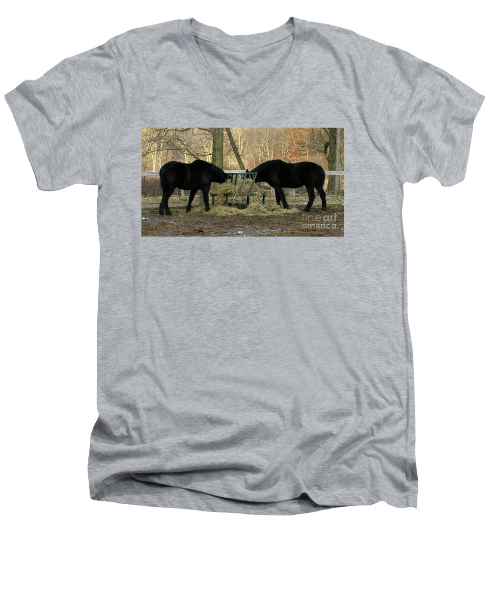 Horse Men's V-Neck T-Shirt featuring the photograph Barnyard Beauties by Ann Horn