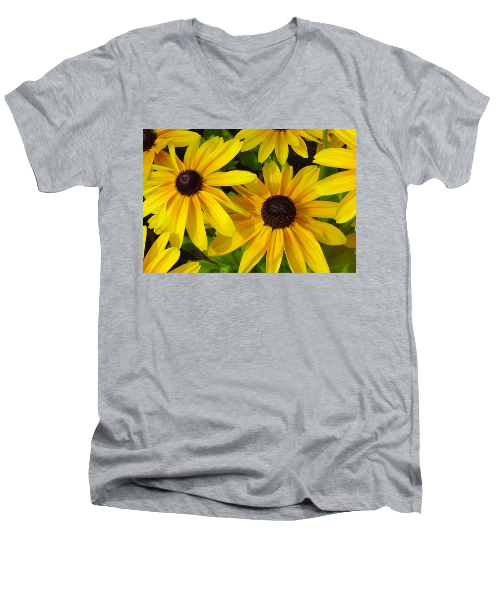 Black Eyed Susan Men's V-Neck T-Shirt featuring the photograph Black Eyed Susans by Suzanne Gaff