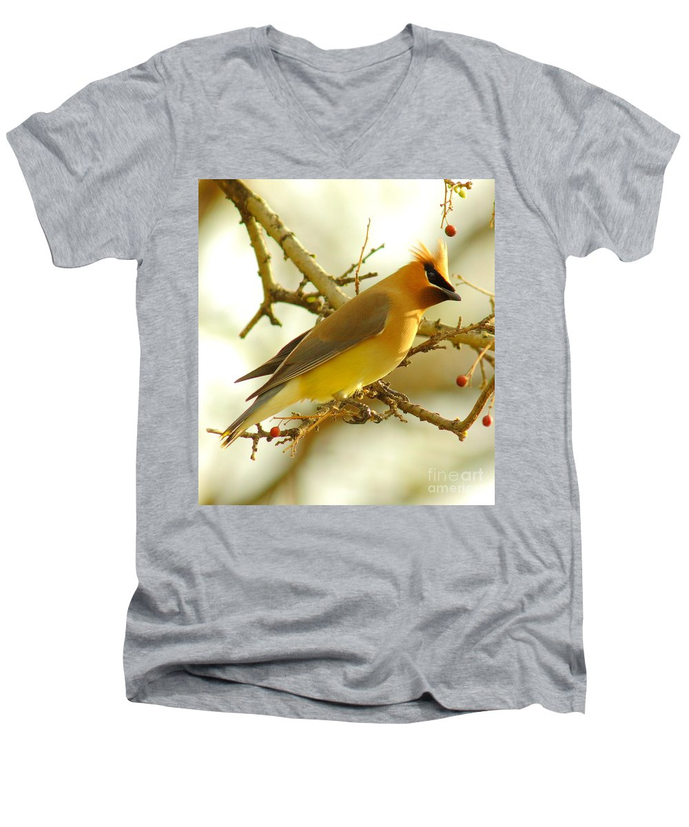 Cedar Waxing V-Neck T-Shirts