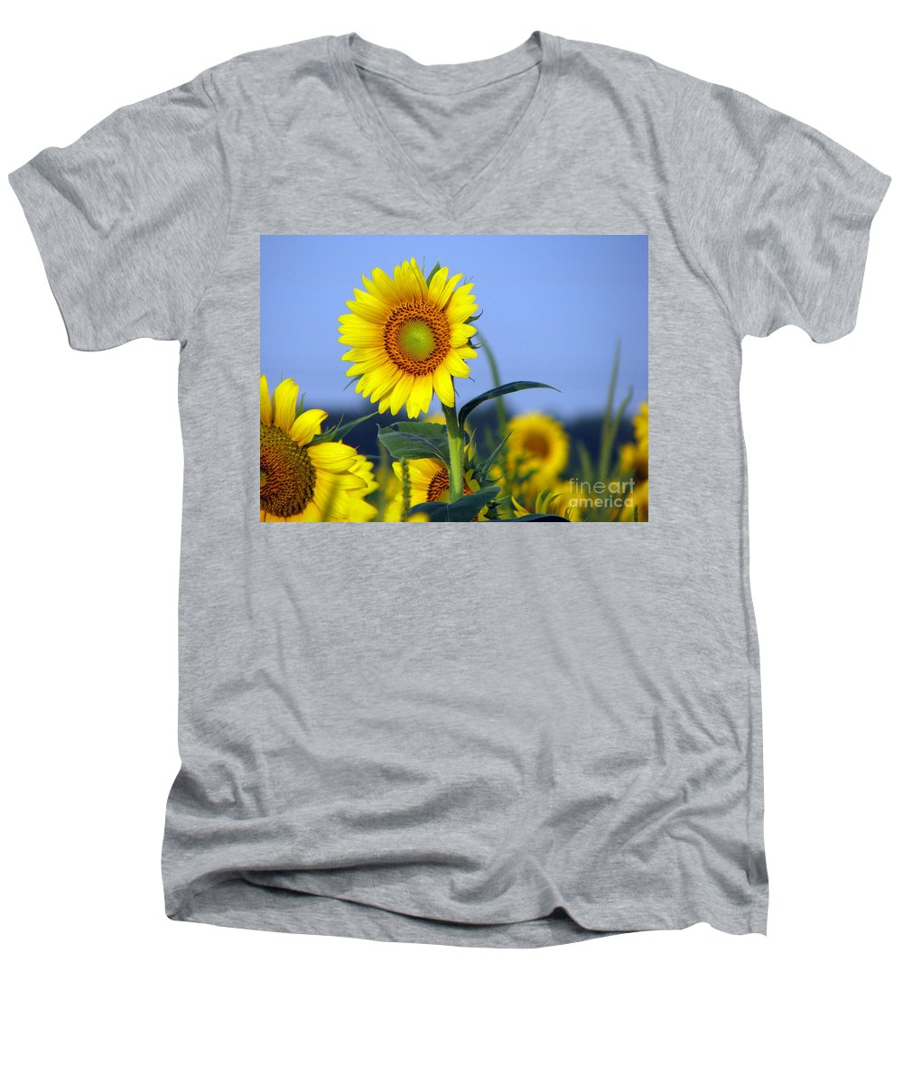 Sunflower Men's V-Neck T-Shirt featuring the photograph Getting To The Sun by Amanda Barcon