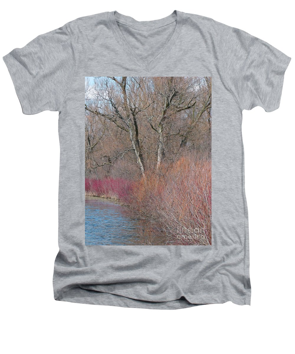 Spring Men's V-Neck T-Shirt featuring the photograph Hint Of Spring by Ann Horn