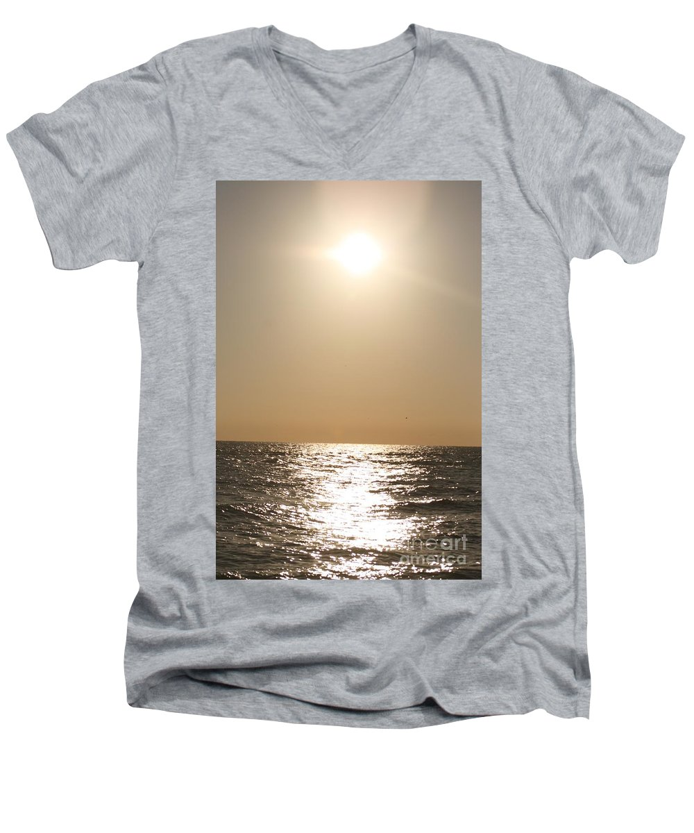 Silver Men's V-Neck T-Shirt featuring the photograph Silver And Gold by Nadine Rippelmeyer