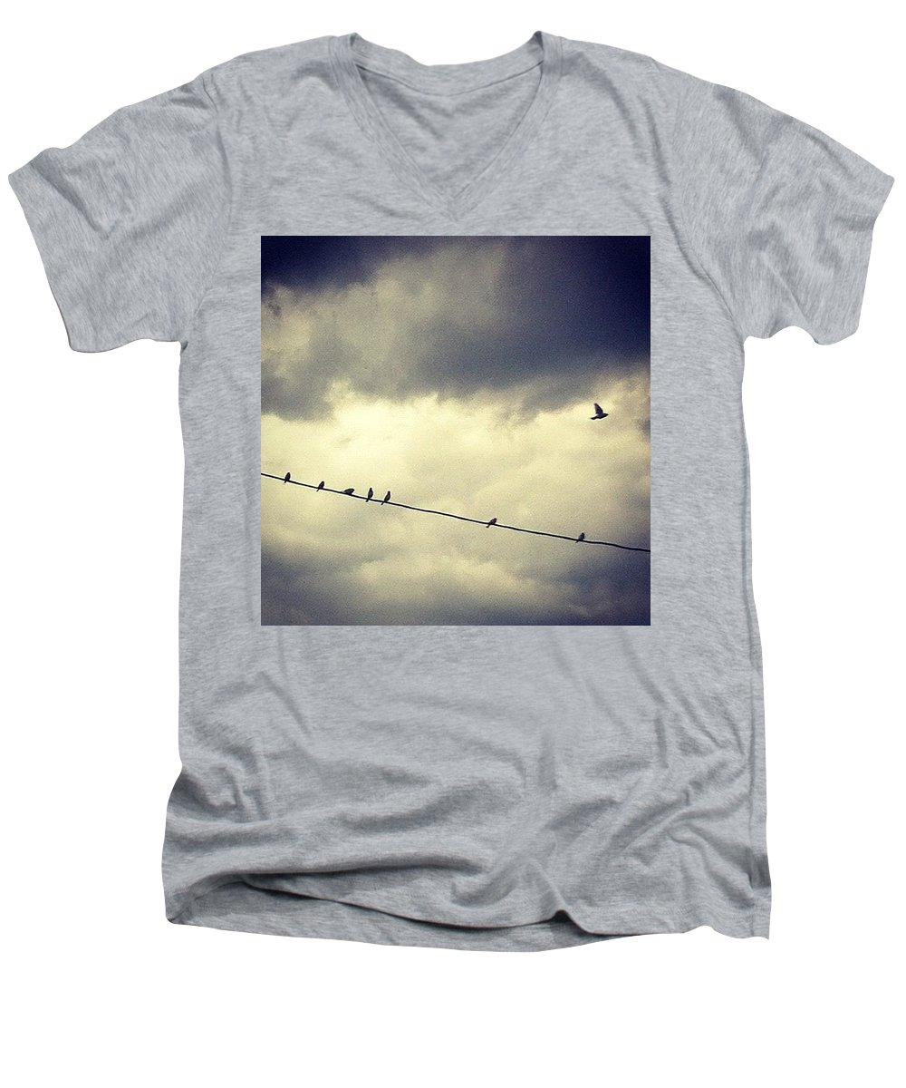 Men's V-Neck T-Shirt featuring the photograph Da Birds by Katie Cupcakes