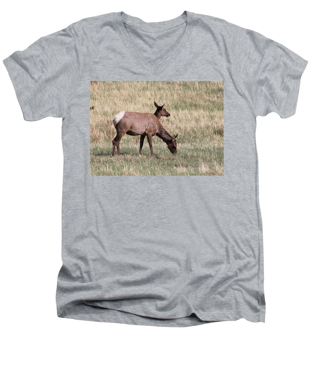 Elk Men's V-Neck T-Shirt featuring the photograph Double Vision by Shane Bechler