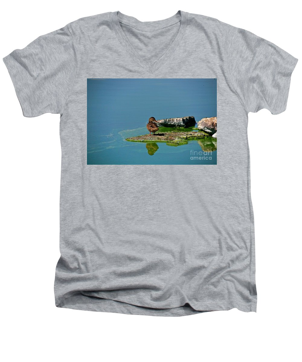 Duck Men's V-Neck T-Shirt featuring the photograph Alone by Robert Pearson