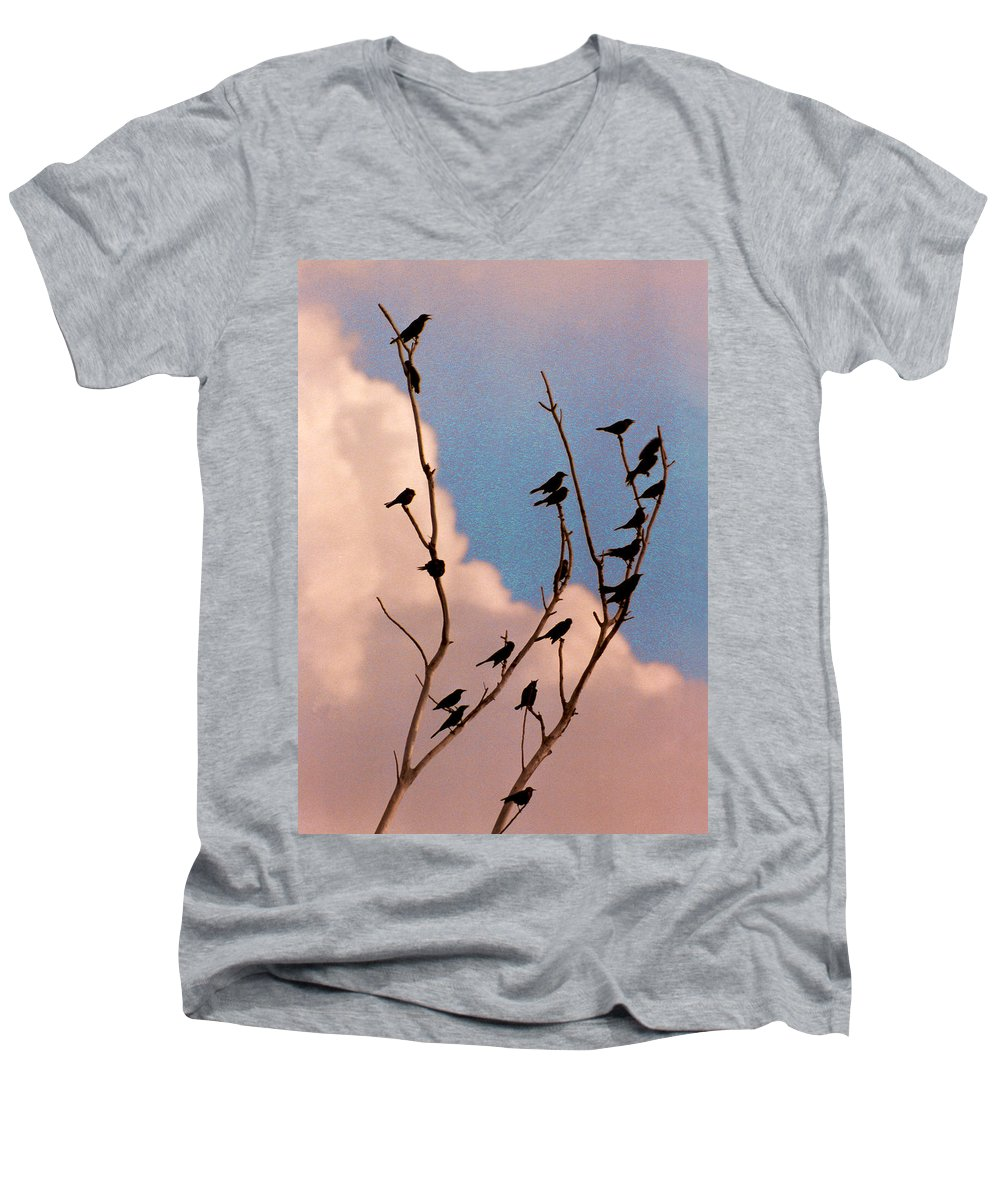 Birds Men's V-Neck T-Shirt featuring the photograph 19 Blackbirds by Steve Karol